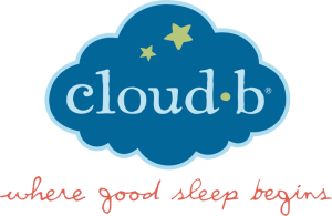 cloudb_logo